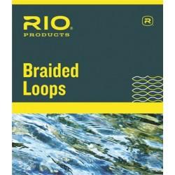 Braiden Loop RIO