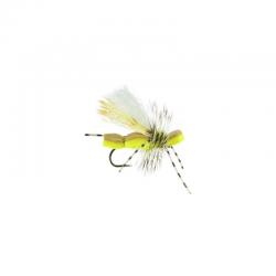 409 Jason Yeager - Yellow