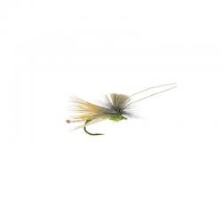 AC Caddis / Olive - Umpqua
