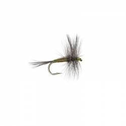 Blue Wing Olive (BWO)