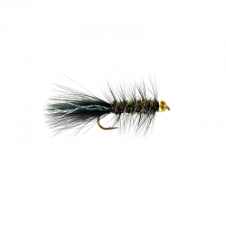 Gold Bead Wooly Bugger