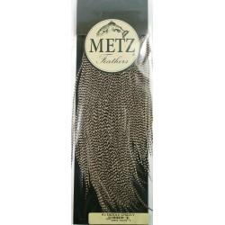 Saddle de Gallo Grado 2 - Metz
