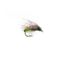 Hot Wire Caddis Pupa Olive